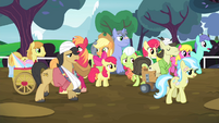 The Apples see ponies walking S4E20