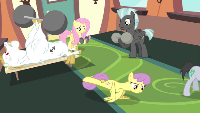 File:Ponyville teams go back to training S4E24.png
