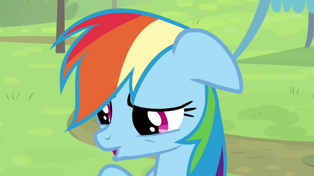 File:Rainbow 'I don't know' S4E10.png