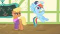 "Rainbow Dash ""train hard"" S4E05.png"