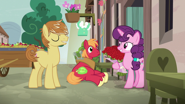 File:Sugar Belle accepting roses from Feather Bangs S7E8.png
