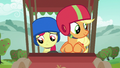 Apple Bloom buckles her seat belt S6E14.png