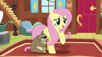 "Fluttershy ""I appreciate you sharing your thoughts"" S7E5"