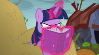 Twilight with her nose in her portfolio S5E23