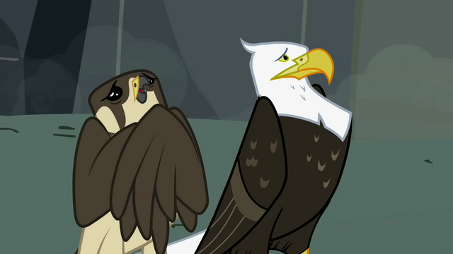 File:Falcon and eagle nervous S2E07.png