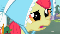 Apple Bloom pleading S2E12