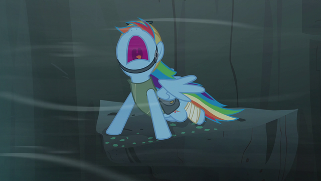 File:Rainbow yelling S5E8.png