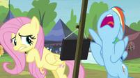 Rainbow Dash exasperated S4E22