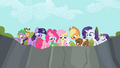 Other main ponies and their pets look down S2E7.png