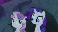 Rarity and Sweetie Belle looking at each other S3E06