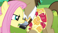 Fluttershy grabs Globe Trotter by the camera S2E19.png
