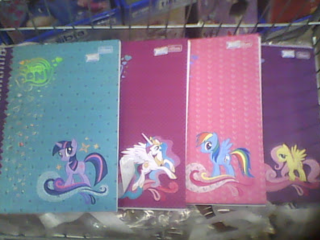 File:Merchandise notebooks.png