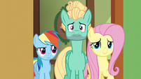 Fluttershy, Dash, and Zephyr enter a cottage room S6E11