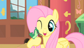 Fluttershy and a new friend1 S01E22.png