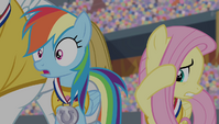 Rainbow Dash shocked and Fluttershy cringing S4E24