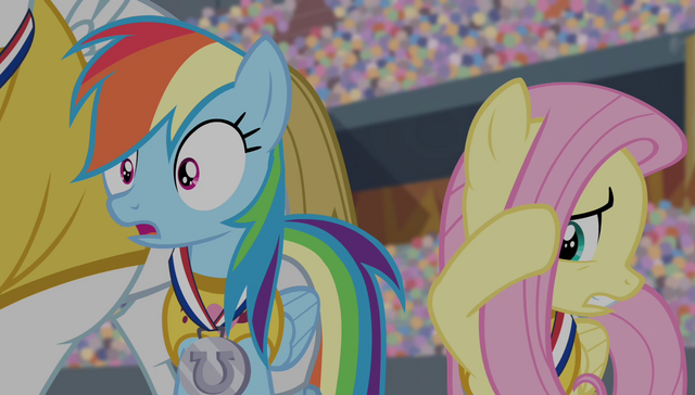 File:Rainbow Dash shocked and Fluttershy cringing S4E24.png