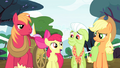 "Apple Bloom ""Do you think I could be a high diver?"" S4E20.png"