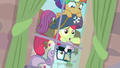 "Apple Bloom ""this pony really likes her apples"" S7E8.png"