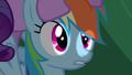 Rainbow Dash had chance S2E21.png