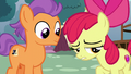 """Apple Bloom """"mopin' around for no reason"""" S6E4.png"""