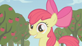 "Apple Bloom ""Runs in the family"" S1E12.png"