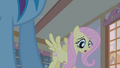 """Fluttershy """"she digs at the ground"""" S1E09.png"""