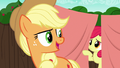 "Applejack ""you can feast your eyes on"" S6E14.png"