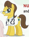 Doctor Horse Earth pony ID EoH.png