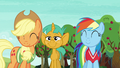 AJ and Rainbow nod at Fluttershy and Pinkie S6E18.png