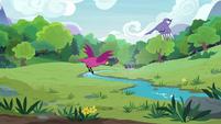 Birds flying across the grassy meadow S7E5