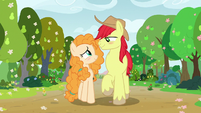 Bright Mac and Pear Butter walking in spring S7E13