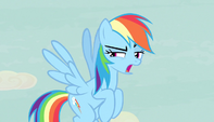 "Rainbow Dash ""thanks a lot, map"" S5E1"