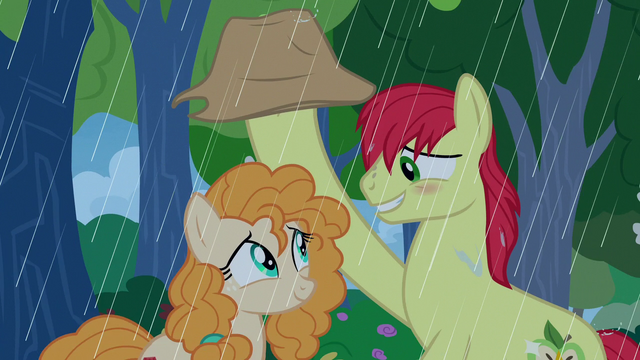 File:Bright Mac shields Pear Butter from the rain S7E13.png