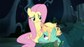 Fluttershy comforting Zephyr Breeze S6E11.png
