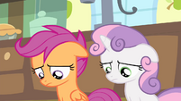 Sweetie and Scootaloo looking down S4E17