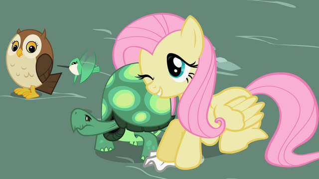 File:Fluttershy with Tank 2 S2E07.png