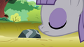 Maud sniffing the rock S4E18.png