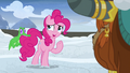 """Pinkie Pie """"I'm sure it'll be okay"""" S7E11.png"""