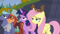 Twilight and Fluttershy not amused S5E23.png