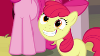 Apple Bloom big grin S4E09