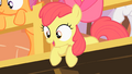 Apple Bloom how did we do S1E18.png