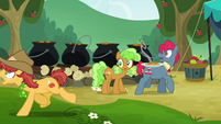 Half Baked Apple dashing to cider trough S3E8