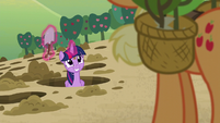 Twilight the hole digger S5E3