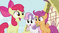 Apple Bloom 'waited long enough' S2E06.png