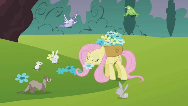 File:Fluttershy noms flower S01E10.png