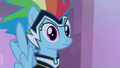 Rainbow Dash confused look S4E06.png