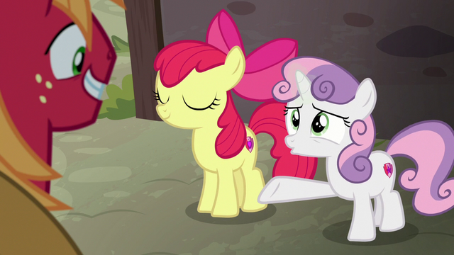 "File:Sweetie Belle ""you're gonna be her hero!"" S7E8.png"