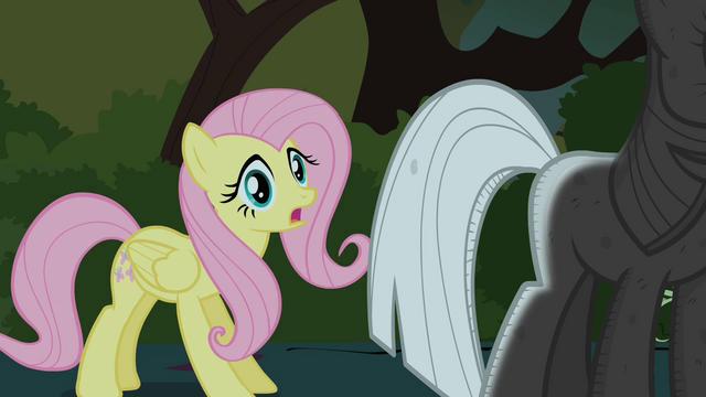 File:Fluttershy finds Twilight S01E17.png