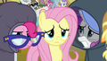 Pinkie, Fluttershy, and Rarity looking miserable S7E14.png