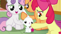 CMC with Angel S3E11